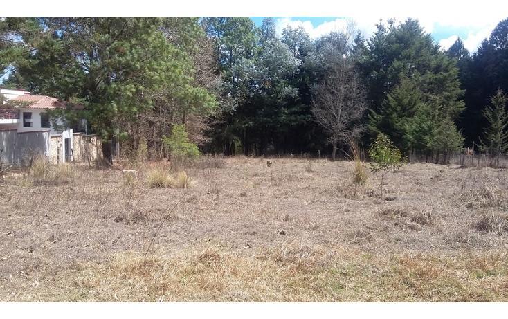 Foto de terreno comercial en venta en  , los alcanfores, san cristóbal de las casas, chiapas, 1835026 No. 04