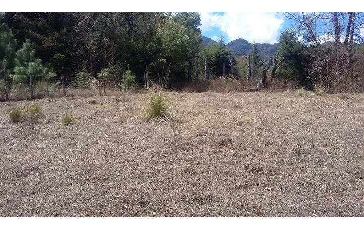 Foto de terreno comercial en venta en  , los alcanfores, san cristóbal de las casas, chiapas, 1835026 No. 05