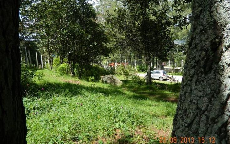 Foto de terreno habitacional en venta en, los alcanfores, san cristóbal de las casas, chiapas, 1875204 no 03