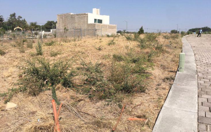 Foto de terreno habitacional en venta en, los almendros, zapopan, jalisco, 1175545 no 02