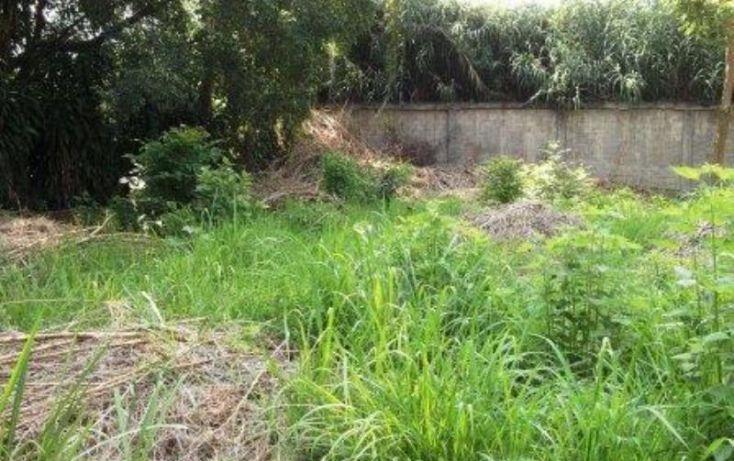 Foto de terreno habitacional en venta en, los amates, cuautla, morelos, 1153193 no 05