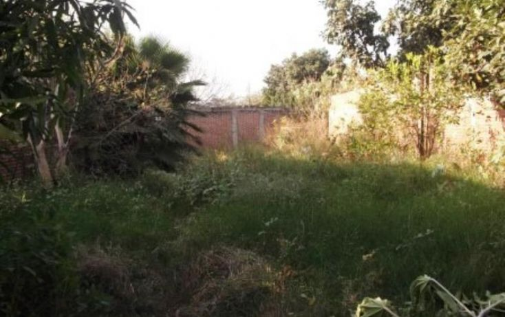 Foto de terreno habitacional en venta en, los amates, cuautla, morelos, 1543616 no 02