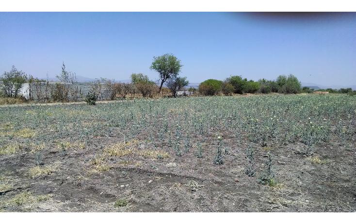 Foto de terreno comercial en venta en  , los ángeles, corregidora, querétaro, 1226211 No. 03