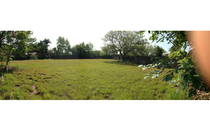 Foto de terreno habitacional en venta en  , los apantles, jiutepec, morelos, 1741594 No. 03