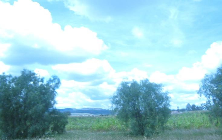 Foto de terreno comercial en venta en  , los arquitos, jes?s mar?a, aguascalientes, 1186593 No. 01