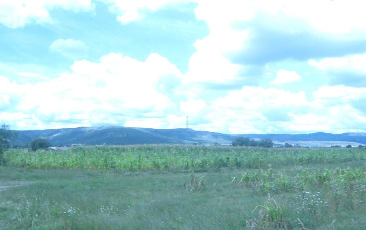 Foto de terreno comercial en venta en  , los arquitos, jes?s mar?a, aguascalientes, 1186593 No. 03