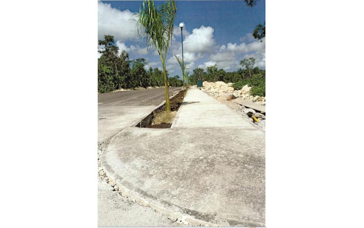 Foto de terreno habitacional en venta en  , los arrecifes, solidaridad, quintana roo, 1136045 No. 01