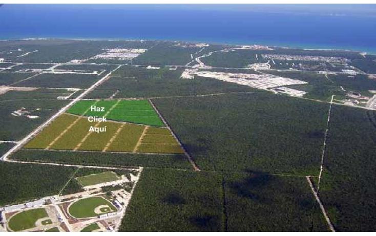 Foto de terreno habitacional en venta en  , los arrecifes, solidaridad, quintana roo, 1256817 No. 02