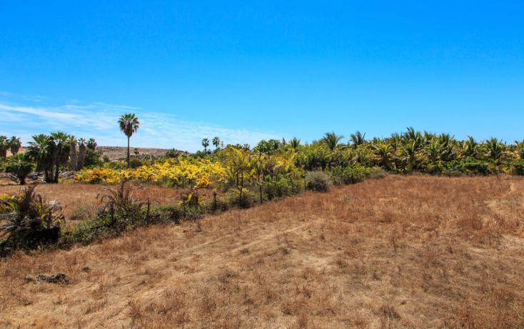 Foto de terreno habitacional en venta en  , los barriles, la paz, baja california sur, 1042651 No. 01