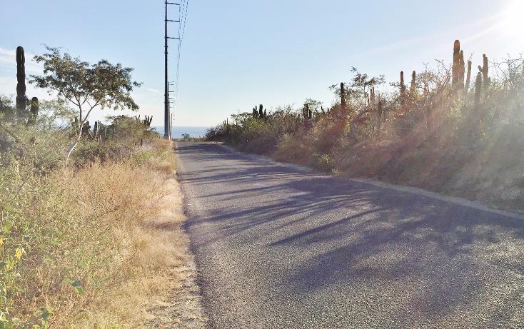 Foto de terreno habitacional en venta en  , los cangrejos, los cabos, baja california sur, 1042867 No. 05