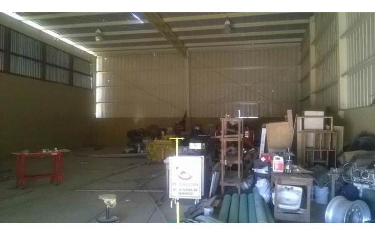 Foto de nave industrial en renta en carretera a todos santos , los cangrejos, los cabos, baja california sur, 1318685 No. 07