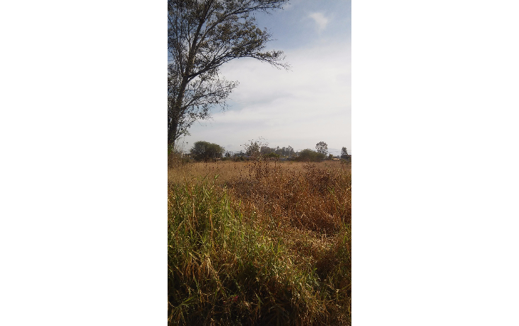 Foto de terreno habitacional en venta en  , los cedros, ixtlahuacán de los membrillos, jalisco, 1189489 No. 01