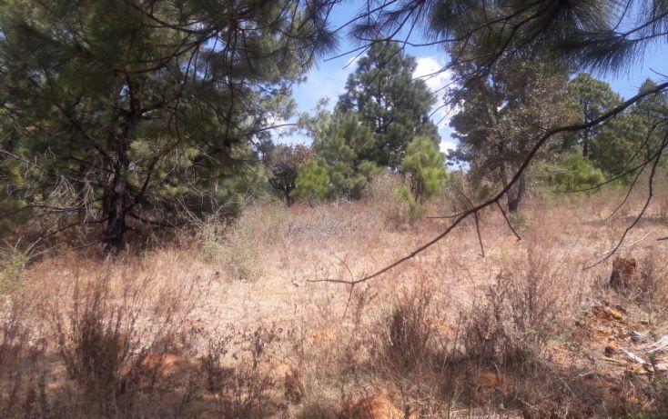 Foto de terreno habitacional en venta en, los espinos, tapalpa, jalisco, 1692342 no 01