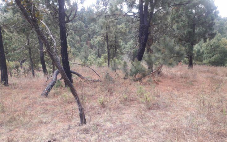 Foto de terreno habitacional en venta en, los espinos, tapalpa, jalisco, 1692342 no 04