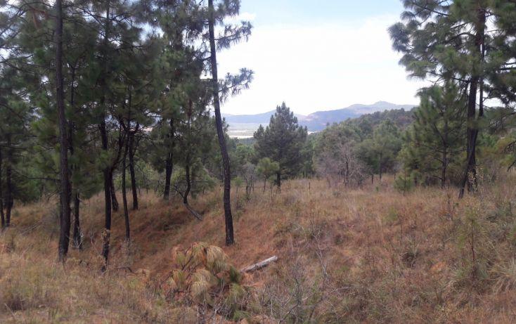 Foto de terreno habitacional en venta en, los espinos, tapalpa, jalisco, 1692342 no 07