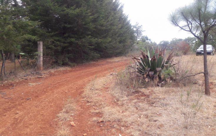Foto de terreno habitacional en venta en, los espinos, tapalpa, jalisco, 1692342 no 08