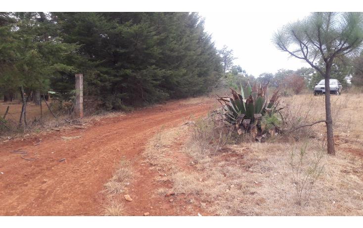 Foto de terreno habitacional en venta en  , los espinos, tapalpa, jalisco, 1692342 No. 08