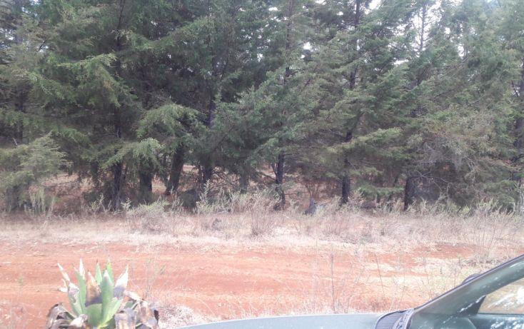 Foto de terreno habitacional en venta en, los espinos, tapalpa, jalisco, 1692342 no 09