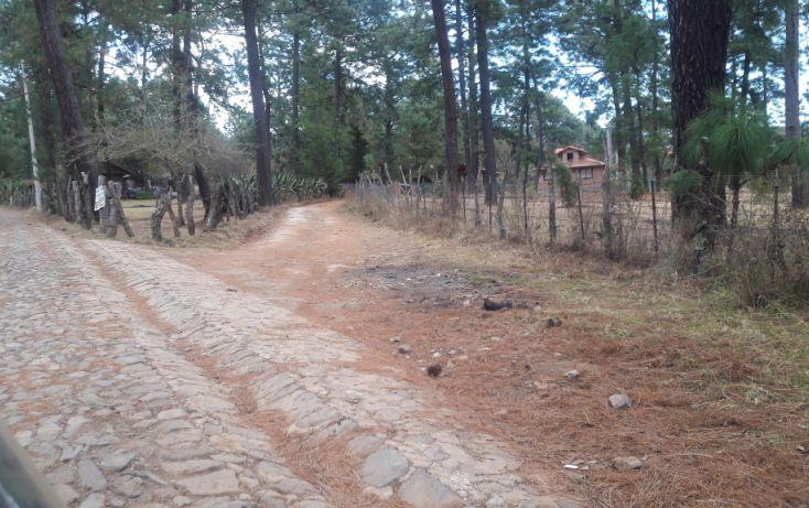 Foto de terreno habitacional en venta en, los espinos, tapalpa, jalisco, 1692342 no 10