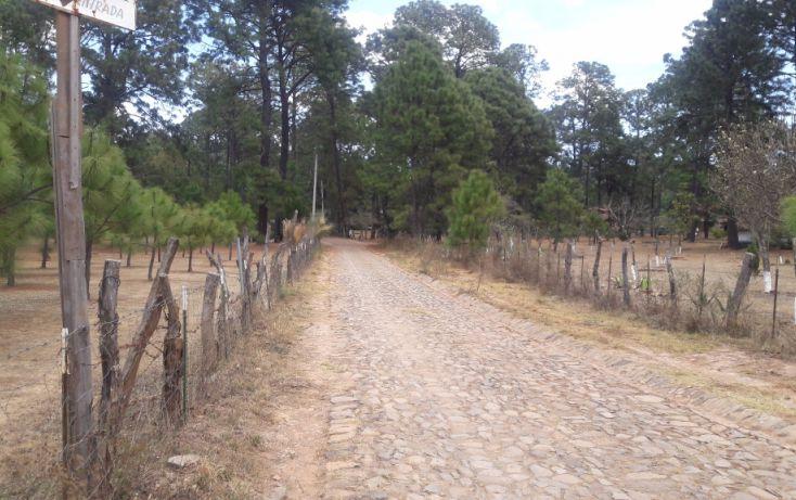 Foto de terreno habitacional en venta en, los espinos, tapalpa, jalisco, 1692342 no 12