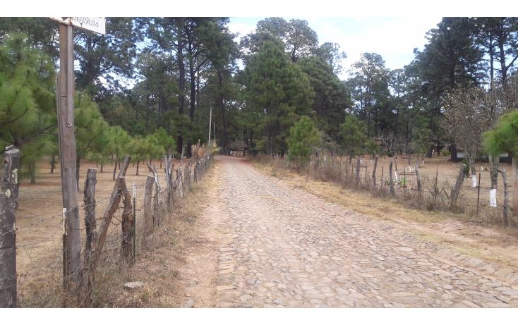 Foto de terreno habitacional en venta en  , los espinos, tapalpa, jalisco, 1692342 No. 12