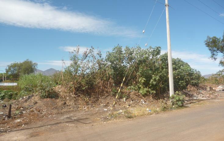 Foto de terreno habitacional en venta en  , los espinos, zamora, michoac?n de ocampo, 1823322 No. 06