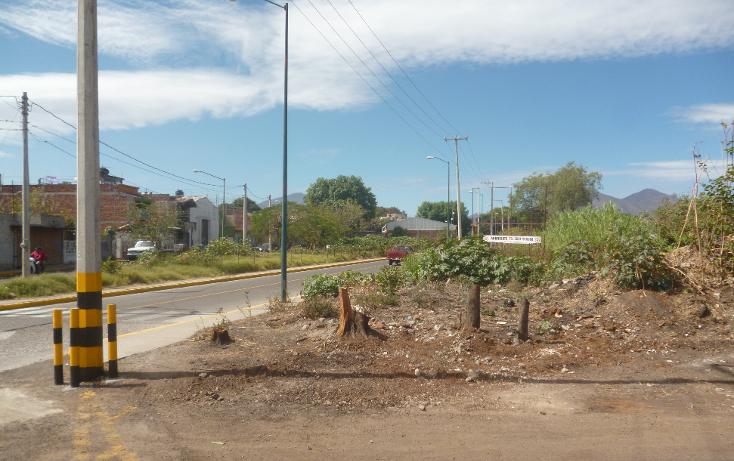 Foto de terreno comercial en venta en  , los espinos, zamora, michoacán de ocampo, 1823590 No. 05