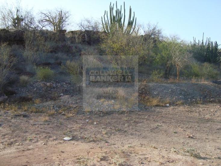 Foto de rancho en venta en los hornos , los hornos, cajeme, sonora, 929373 No. 06