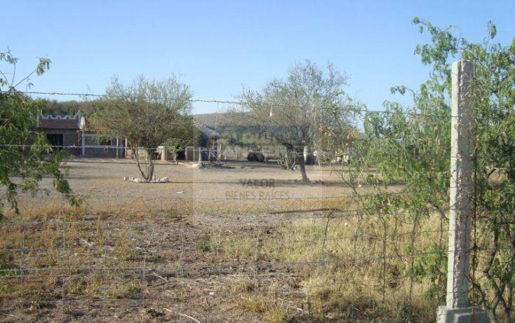Foto de rancho en venta en los hornos, los hornos, cajeme, sonora, 929373 no 08