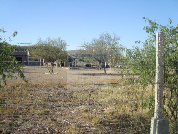 Foto de rancho en venta en los hornos , los hornos, cajeme, sonora, 929373 No. 08