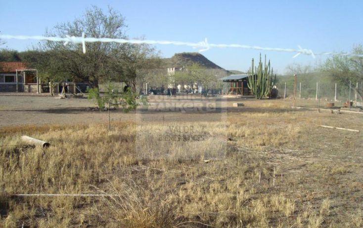 Foto de rancho en venta en los hornos, los hornos, cajeme, sonora, 929373 no 11