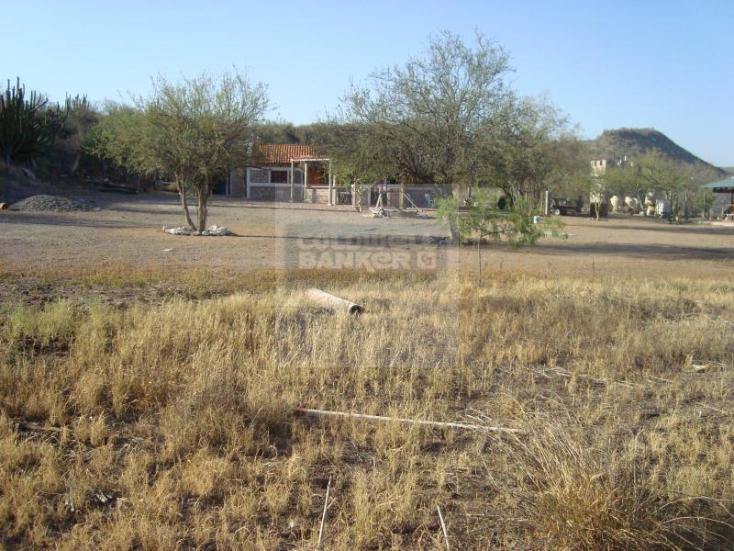 Foto de rancho en venta en los hornos , los hornos, cajeme, sonora, 929373 No. 12
