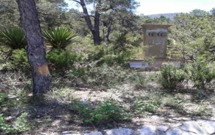 Foto de terreno habitacional en venta en, los lirios, arteaga, coahuila de zaragoza, 2012745 no 07