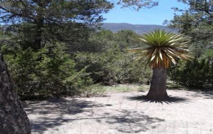 Foto de terreno habitacional en venta en, los lirios, arteaga, coahuila de zaragoza, 2012745 no 10