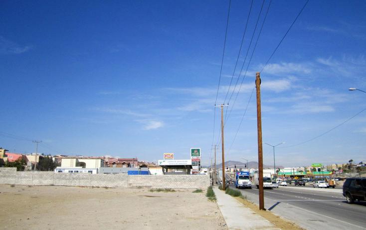 Foto de terreno comercial en renta en  , los lobos, tijuana, baja california, 1202613 No. 02