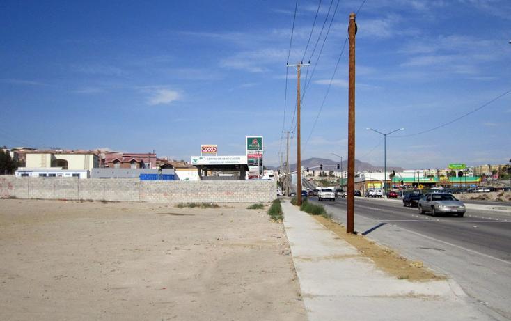 Foto de terreno comercial en renta en  , los lobos, tijuana, baja california, 1202613 No. 04