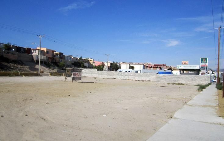 Foto de terreno comercial en renta en  , los lobos, tijuana, baja california, 1202613 No. 05