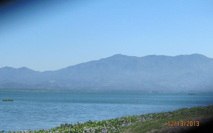 Foto de terreno comercial en venta en  , los mogotes, coyuca de ben?tez, guerrero, 1255681 No. 10