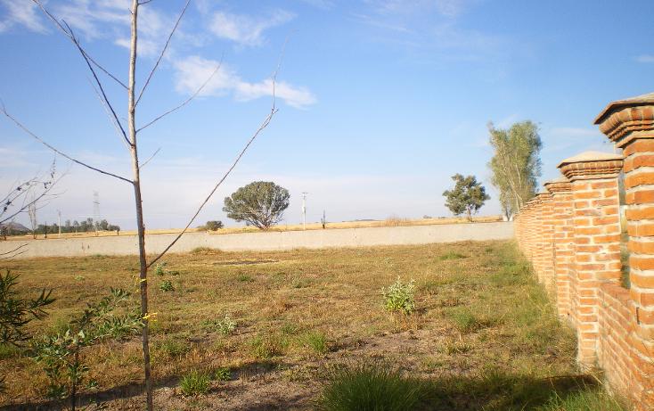 Foto de terreno habitacional en venta en  , los molinos, zapopan, jalisco, 1830892 No. 07