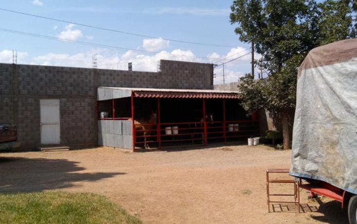 Foto de local en venta en  , los nogales, chihuahua, chihuahua, 1332081 No. 06