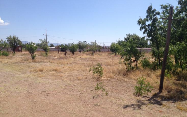 Foto de rancho en venta en  , los nogales, chihuahua, chihuahua, 947149 No. 03