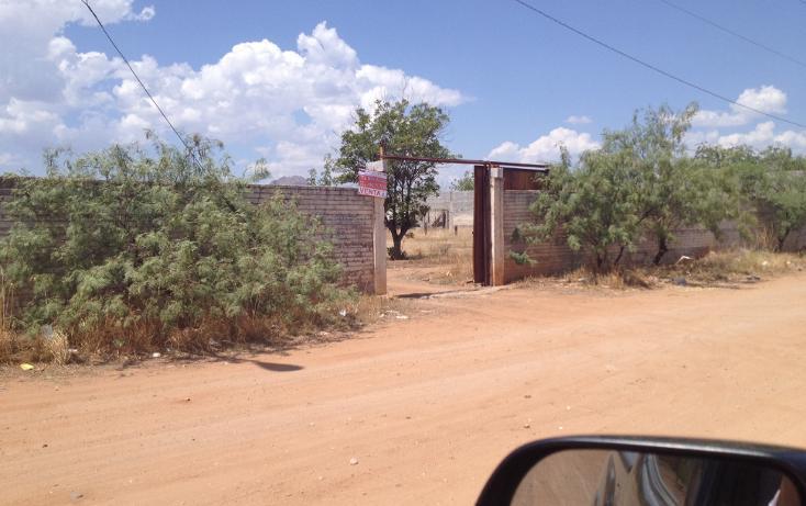 Foto de rancho en venta en  , los nogales, chihuahua, chihuahua, 947149 No. 05