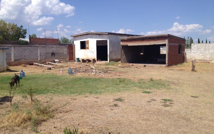 Foto de rancho en venta en  , los nogales, chihuahua, chihuahua, 947149 No. 09