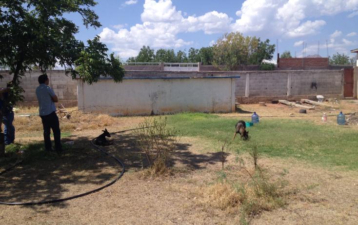 Foto de rancho en venta en  , los nogales, chihuahua, chihuahua, 947149 No. 10