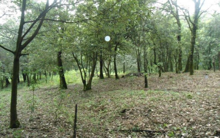 Foto de terreno habitacional en venta en, los ocotes, tepoztlán, morelos, 1483753 no 02