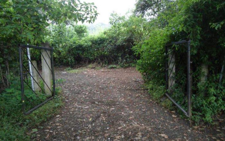 Foto de terreno habitacional en venta en, los ocotes, tepoztlán, morelos, 1483753 no 03