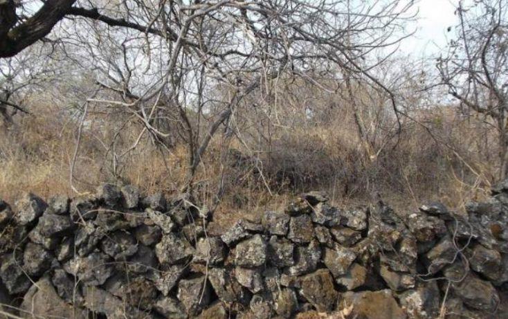 Foto de terreno habitacional en venta en, los ocotes, tepoztlán, morelos, 1751236 no 02