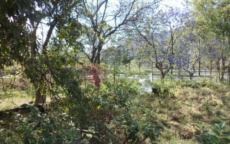 Foto de terreno habitacional en venta en, los ocotes, tepoztlán, morelos, 2025873 no 08