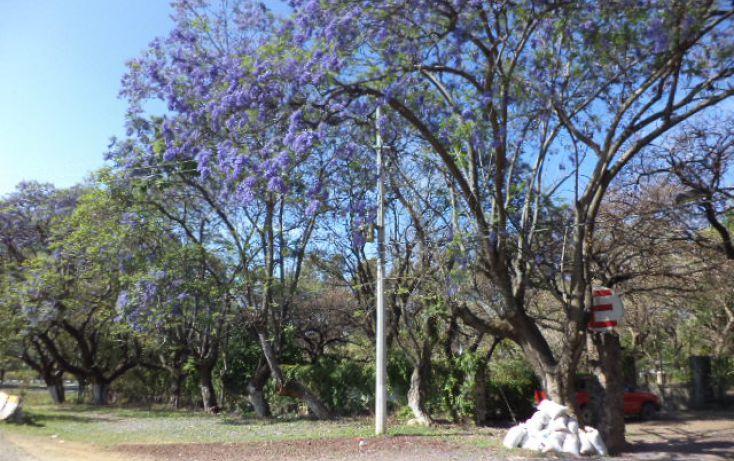 Foto de terreno habitacional en venta en, los ocotes, tepoztlán, morelos, 2025873 no 10