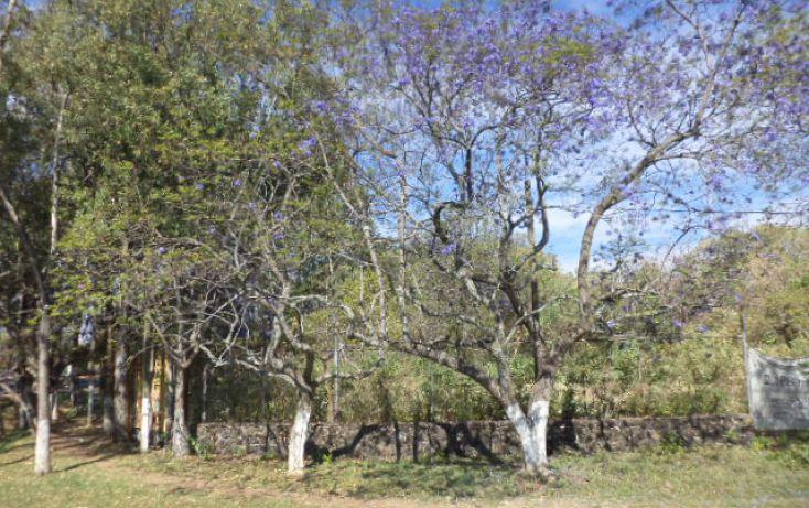 Foto de terreno habitacional en venta en, los ocotes, tepoztlán, morelos, 2025873 no 12